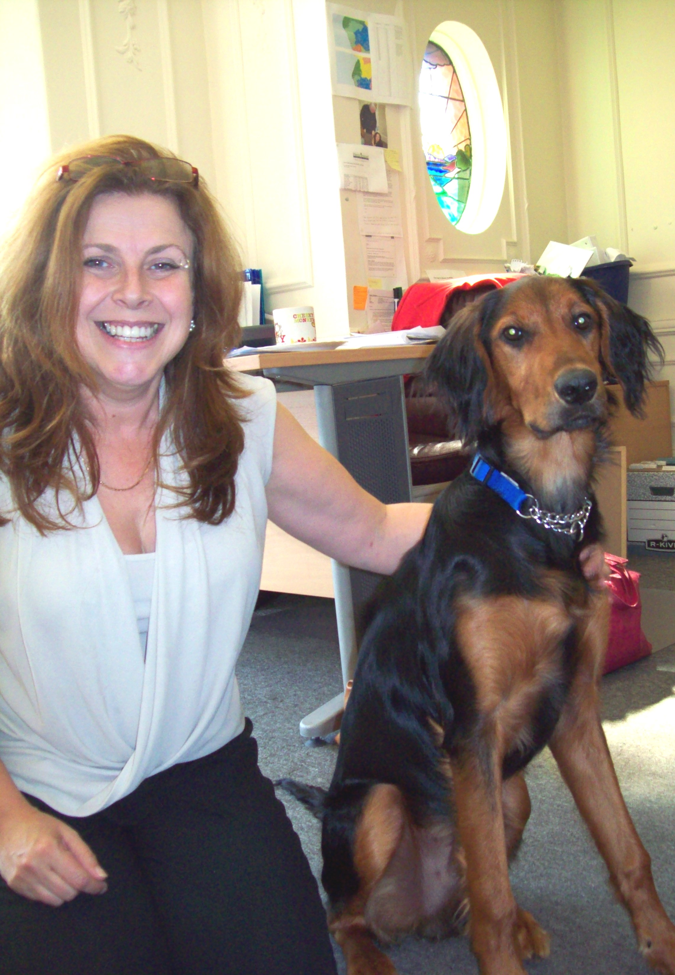 6-month-old Red Setter and Border Collie Mutley next to Home Instead Southport owner Irene Hough